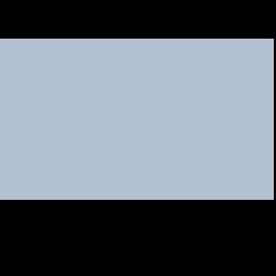 Chicago Next Award - New